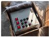 帶拉手式鋼板焊接防爆照明動力配電箱