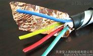 RS485信號電纜(天津電纜)