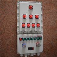 隔爆型防爆照明動力配電箱