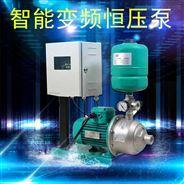 小型别墅公寓家庭供水变频增压泵