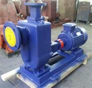 耐腐蚀耐酸碱排污泵 高扬程污水泵 自吸泵