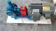 圓弧保溫泵華潮牌 業內推薦圓弧齒輪泵