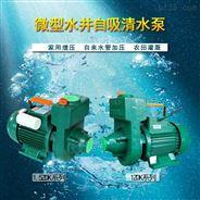 廣東凌霄樓層增壓泵水井自吸家用供水泵