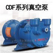 鋼鐵廠用水環式真空泵臥式抽氣泵