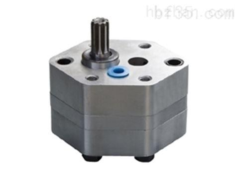 Bucher Hydraulics CB-G2 齒輪泵