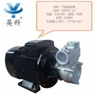 50KFD-12臭氧水气液混合泵