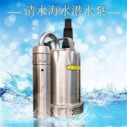 手提式不锈钢泵自动潜水泵