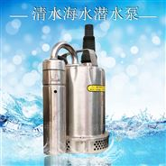 手提式不銹鋼泵自動潛水泵