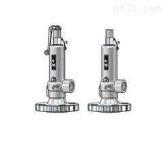Niezgodka safety valve 98型
