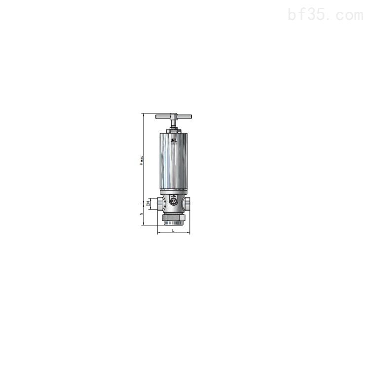 阀门Niezgodka safety valve  PN40型