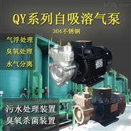 化工排污输送水泵水帘循环溶气泵电压可定