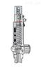 Niezgodka safety valve 1.2C型 赫尔纳